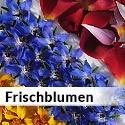 Alle Frischblumen
